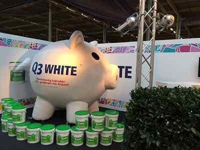 Inflatable Pig  Moneysaver