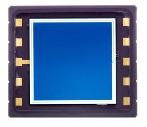 PIN Photodiodes