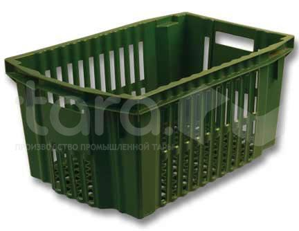 Vegetables and Fruit Containers