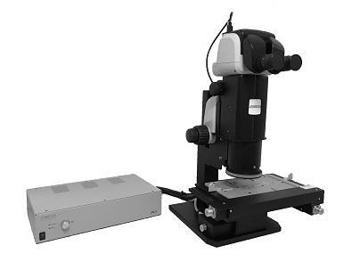 Lichtmikroskopie