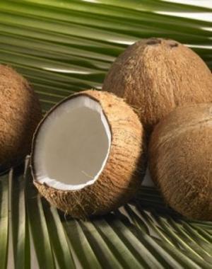 Coconut Ingredients