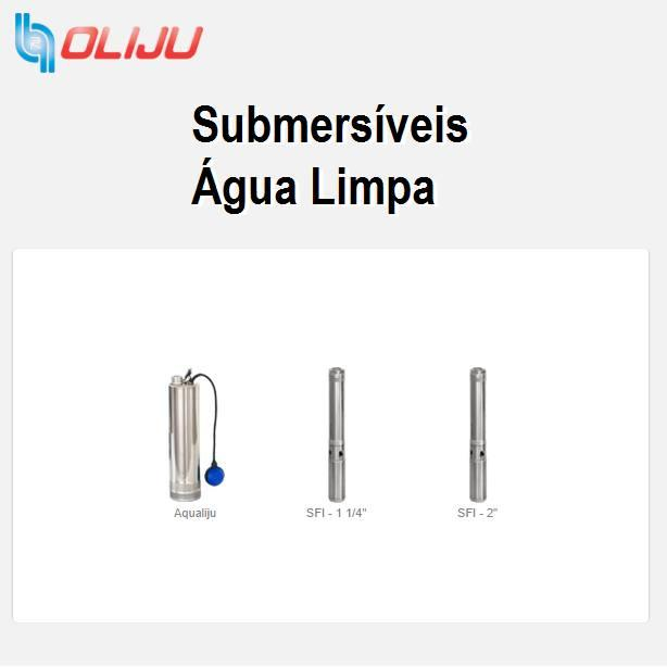 Submersible Clean Water