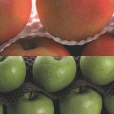 Protect fragile products fruit