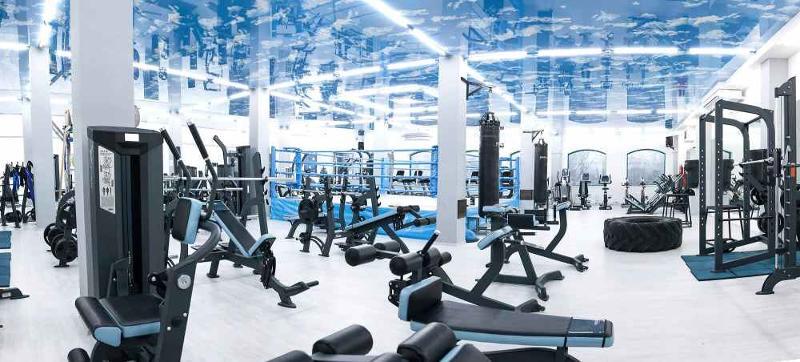 Professional Strength training Equipment