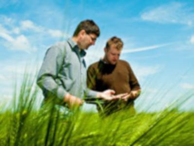 Landwirtschaftliche Forschung und Beratung