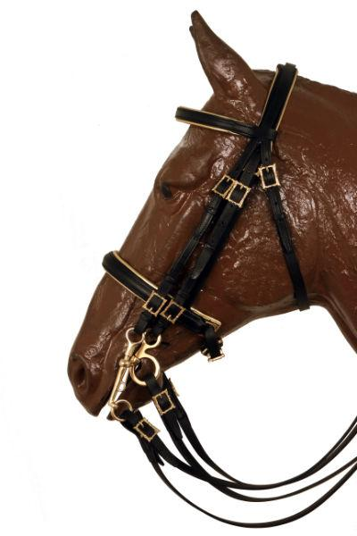 Mixed English Bridle
