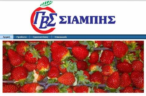 Our products Strawberries from Greece
