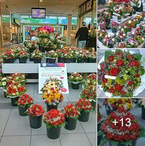 Bouquets even for PLN 20