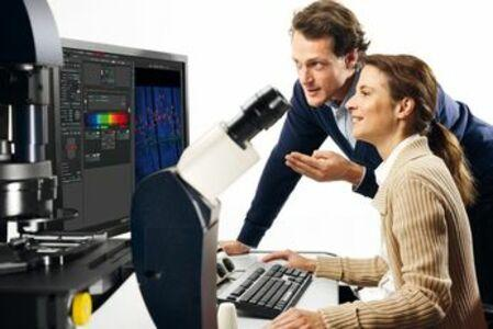 Confocal Microscopes