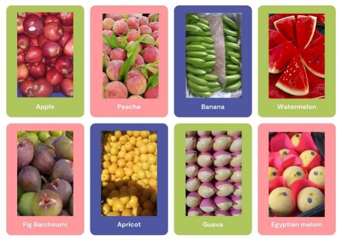 Egyptian fruits