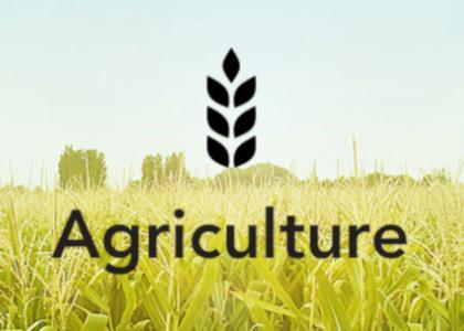 Transportmanagement-Lösungen von Agrargütern