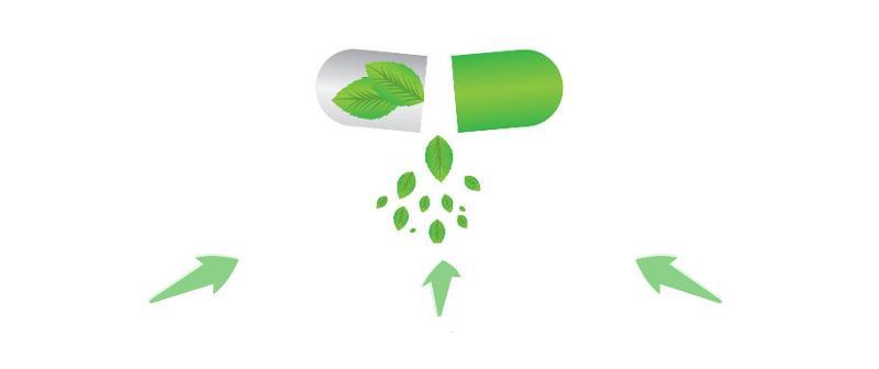 Vegetal caps supplements
