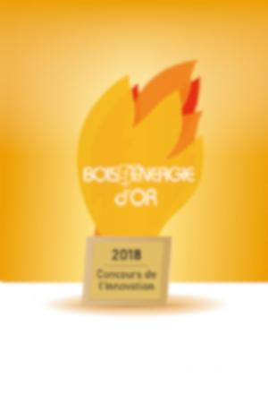 Auszeichnung Innovationswettbewerb der Bois Energy Limoges! Diesmal in Gold!