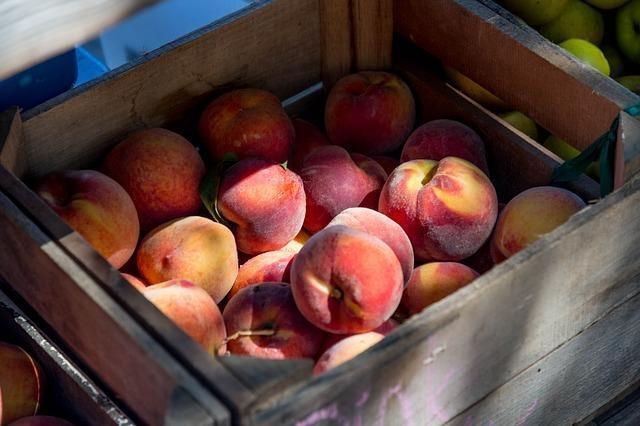 Peaches export