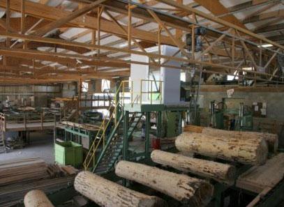 Le site de production des Avivés de l'Est