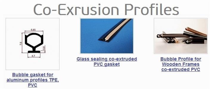 Co_Exrusion_Profiles