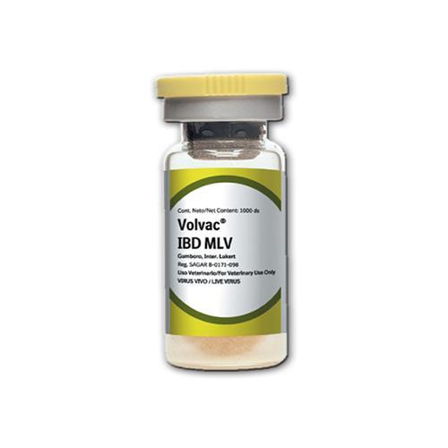 VOLVAC IBD MLV