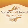 ABNAA SAYED ELOBIED TRADING CO. LTD
