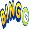 BINGO77 UK