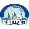 OLIVE GROVES AND OLIVE PRODUCTS TRIFILLARIS LTD