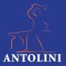 FERRO BATTUTO DI ANTOLINI MASSIMILIANO