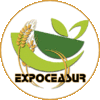 EXPOCEASUR S.L.