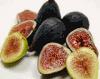 CLAUDIA NATURAL FRUIT S.L.