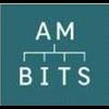 AM-BITS LLC