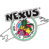 NEXUS GROUP SRL