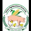 VISION AGRIBUSINESS FARM LTD