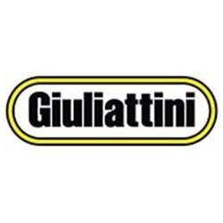 GIULIATTINI SRL