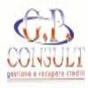 G.P. CONSULT SRL