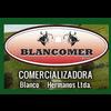 BLANCOMER LTDA