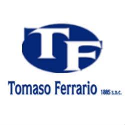 TOMASO FERRARIO 1885