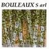 BOULEAUX FRANCE