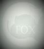 FOX PELLETTERIE S.R.L.