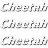 CHEETAH ADVANCED TECHNOLOGIES LTD