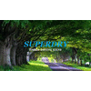 SUPERDRY TIMBER DYING KILNS