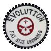 EVOLUTION SRL