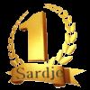 TAPIS SARDJE - TEL 06 28 77 54 25