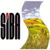 S.I.B.A. SOCIETA' ITALIANA BITUMI E AFFINI SRL