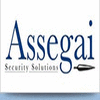 ASSEGAI SECURITY SOLUTIONS