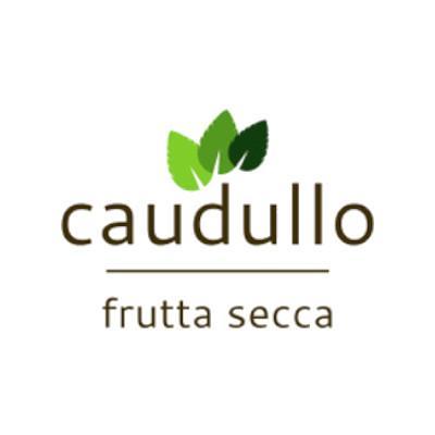 ANTONINO CAUDULLO SRL