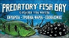 PREDATORY FISH BAY