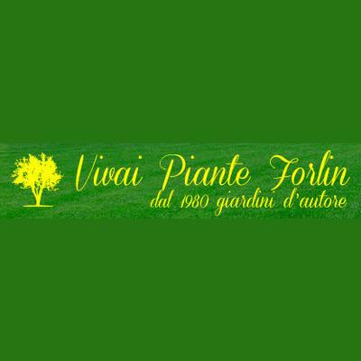 VIVAI PIANTE FORLIN