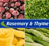 ROSEMARY & THYME LTD