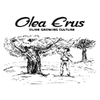 OLEA ERUS - OLIVE GROWING CULTURE