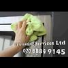 ITT CLEANING SERVICES LTD