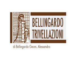 BELLINGARDO TRIVELLAZIONI DI BELLINGARDO ALESSANDRO