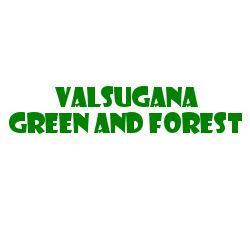VALSUGANA GREEN AND FOREST S.R.L. SEMPLIFICATA